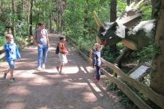 DINO_Park135