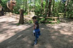DINO_Park138