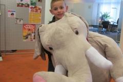 Übergabe Elefant Tobias (2)