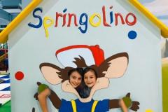 Springo 4
